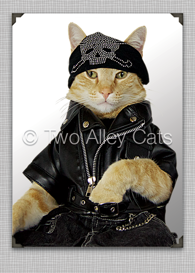 two-alley-cats-biker