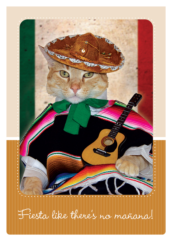 two-alley-cats-fiesta-like-theres-no-manana