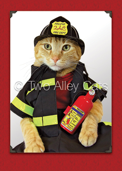 two-alley-cats-fireman