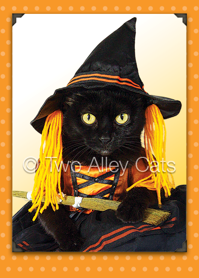 two-alley-cats-halloween-witch