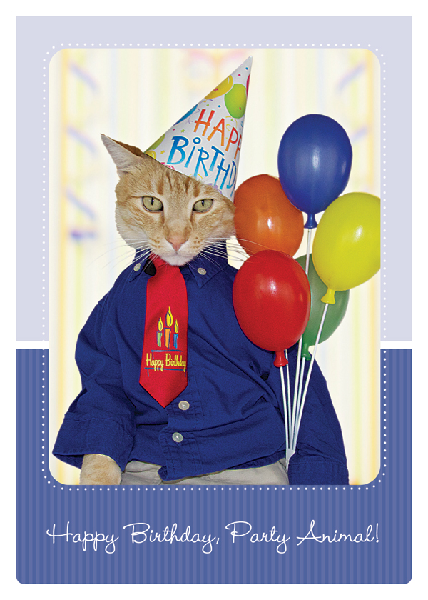 two-alley-cats-happy-birthday-party-animal
